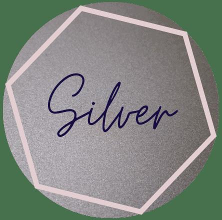 silver social media management social+